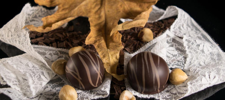 Hazelnut praline in dark couverture