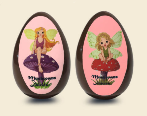 Εgg for girls FAIRIES 350 gr.